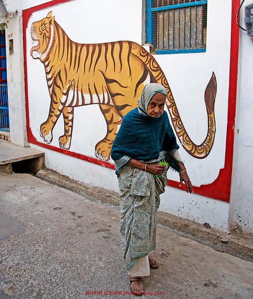 XH-India2010-0216A-157A.jpg