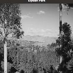 ELYSIAN PARK 21 A.png