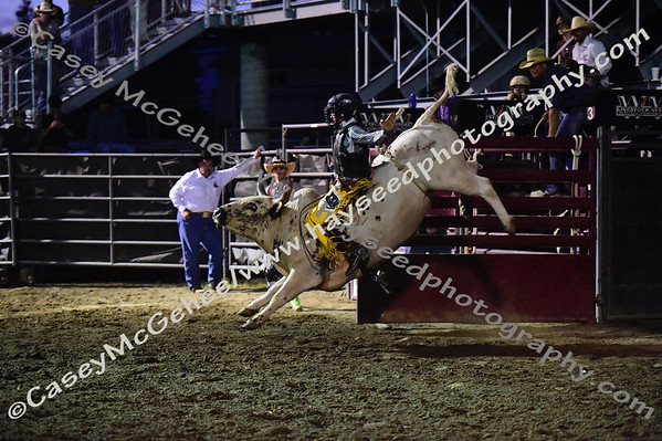 Rodeo - July 3rd