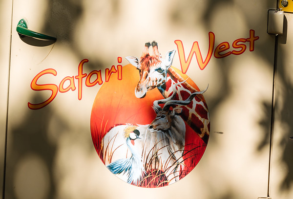 Chris' Birthday Safari West 2018