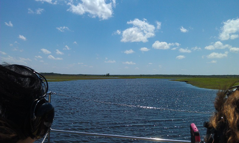 View of the St. Johns River from the airboat