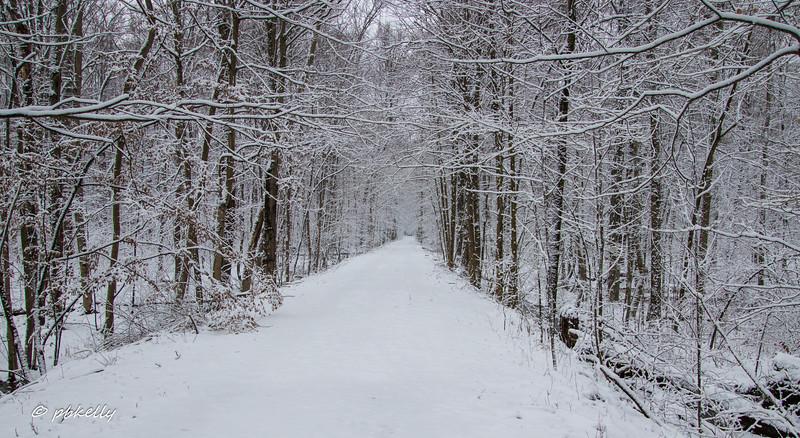 path 012710-3.jpg