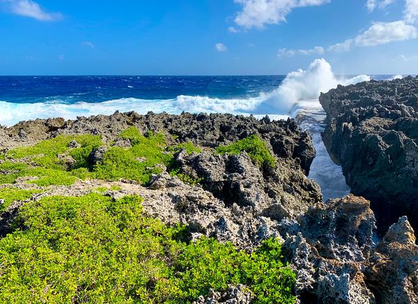DECEMBER 16, 2019: PUNTAN LAGGUA (Parrotfish Point)