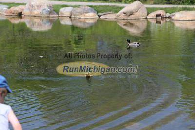 Miscellaneous - 2013 Rubber Ducky 5K