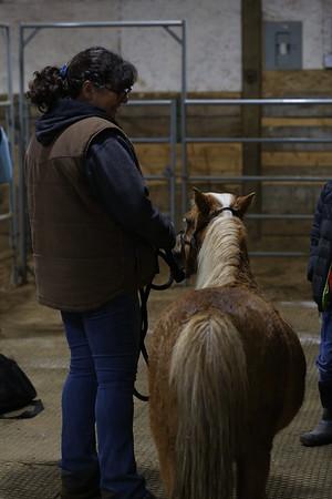 Athabasca Saddle Club
