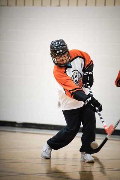 WBL -V- Centennial Adapted Hockey