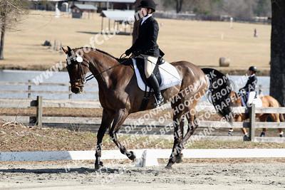 140223 USEA Horse Trial