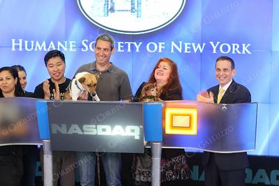 Humane Society of NY