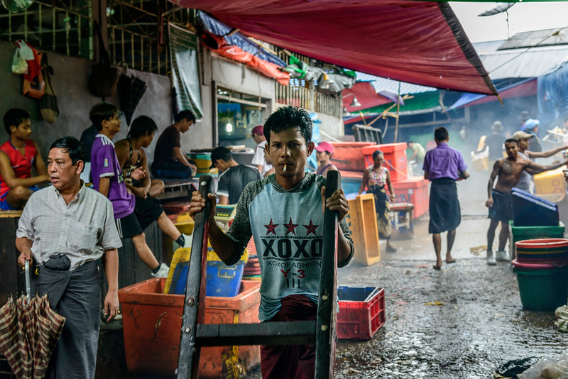 Fish market view.jpg
