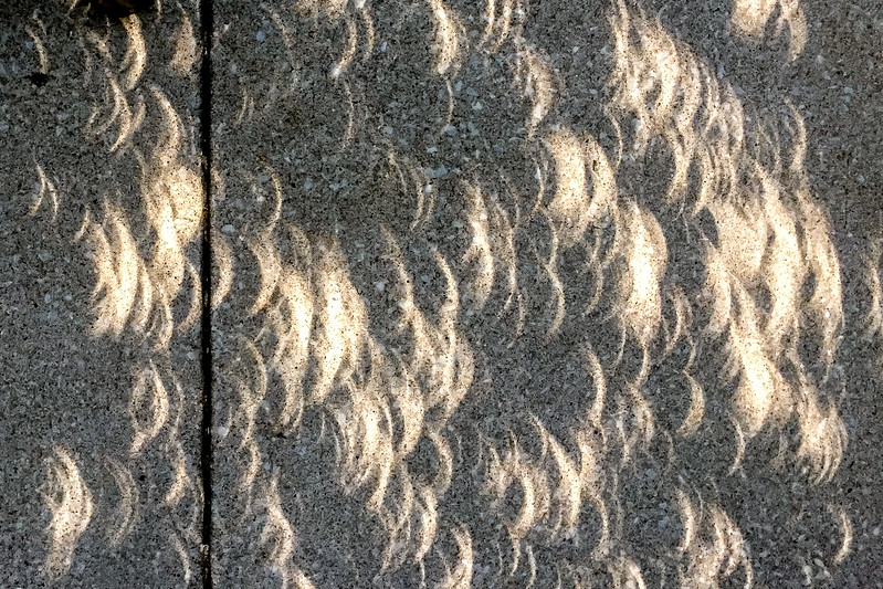 2017 Eclipse Shadows