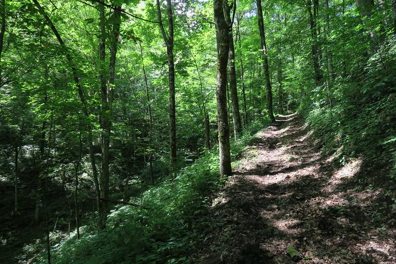 Hyatt Ridge Trail - 4,350'