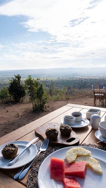 Tanzania-Tarangire-National-Park-Lemala-Mpingo-Ridge-51.jpg