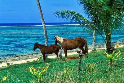 Fiji December 1997