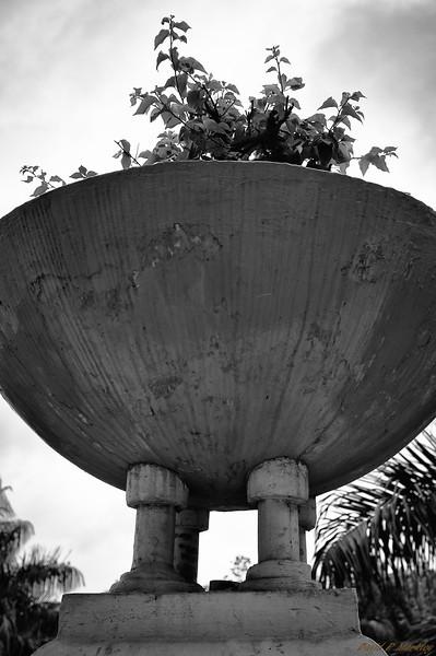 Giant Planter Pot