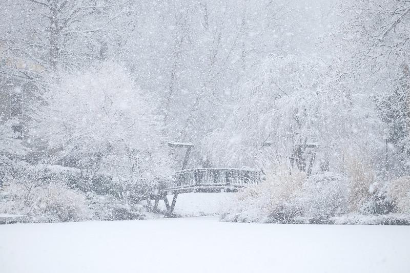 Snowfall over the Van Gogh Bridge