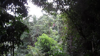 Ziplining Sambo Creek, Honduras