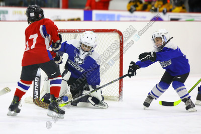 03/01/2020 Watertown vs Massena-WHITE