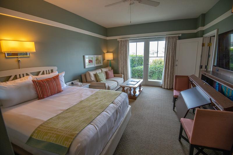 Dinsey Resorts-2-340.jpg