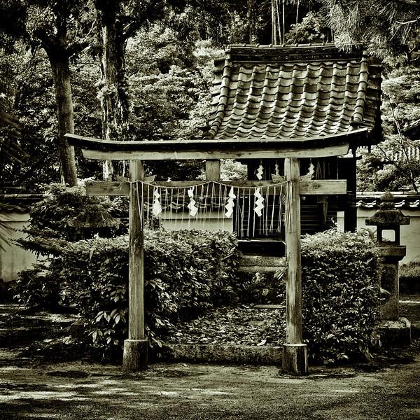Uji - Mampuku-Ji Temple-28.jpg