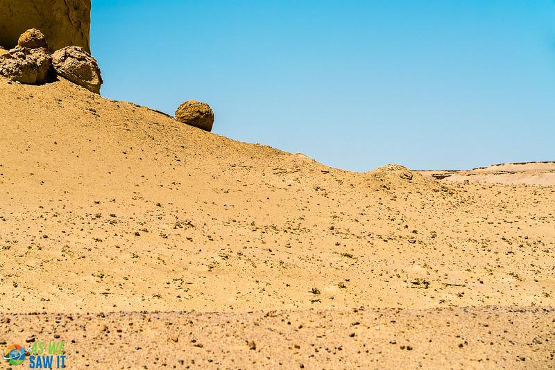 Wadi-El-Hitaan-02408.jpg