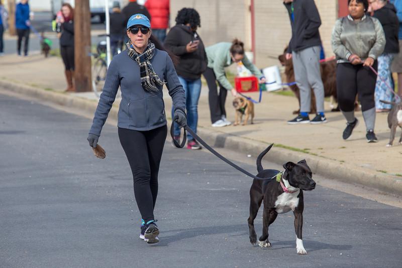 Richmond Spca Dog Jog 2018-519.jpg