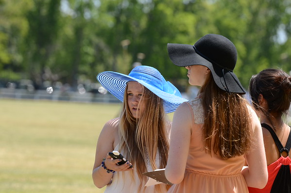 Horses and Hats 2015