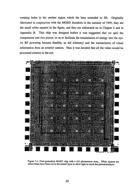 retina 20.jpg