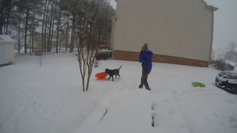 Zoe and Sledding in the snow 012216.mp4