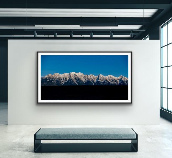 'Blue Bird' Fine Art Print Framed/Unframed