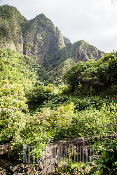 Maui2016-153.jpg