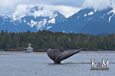 2012 Alaska