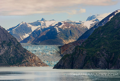 Sawyer Glacier in the Tracy Arm