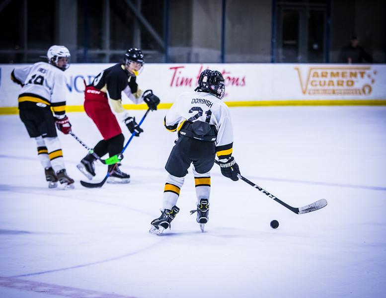 Bruins-251.jpg