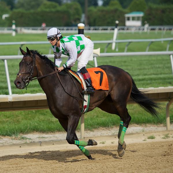 Stallions run Saturday Too