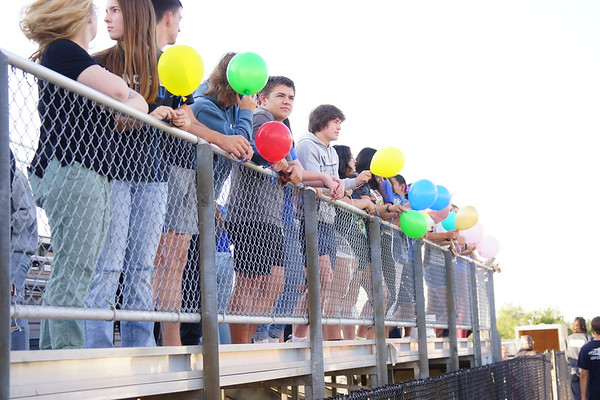 Homecoming - For Lillie
