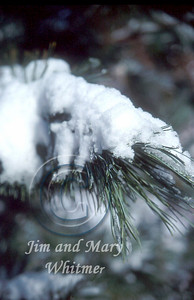 Snow_033