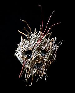 Twig Masks by Elena Lark