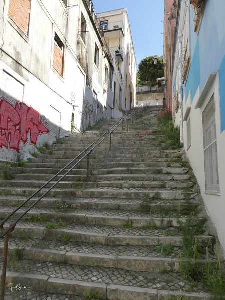 Lisbon August 19 -3.jpg