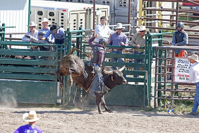 Belt Rodeo