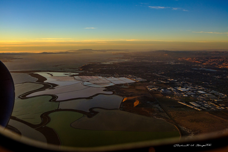 Eastern San Francisco Bay ponds near Hayward, California