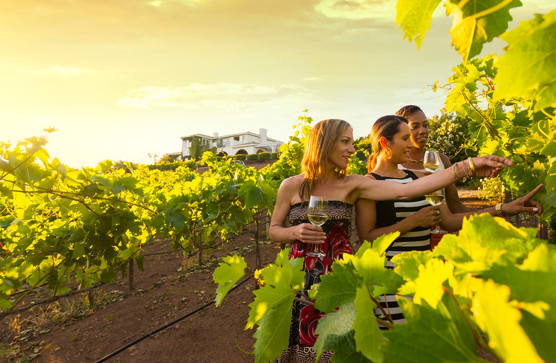 Wine-Country-California_Lifestyle_VillaDellaLuna_Vineyard_WalkingSunset_6567-newsky.jpg