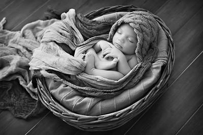 Brooklyn Newborn