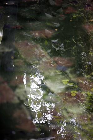 reflêts entre lavoir et étang à Mayet