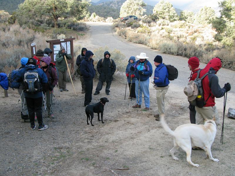 group photos-