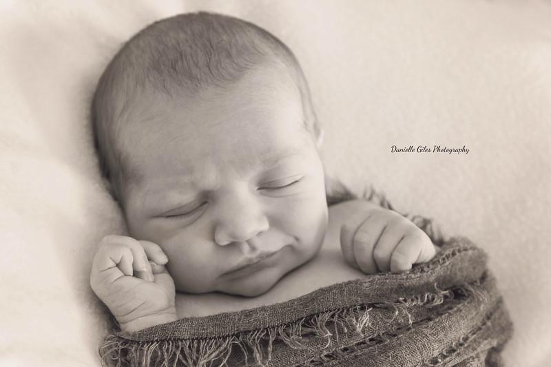 _4_website_newborns-49.jpg