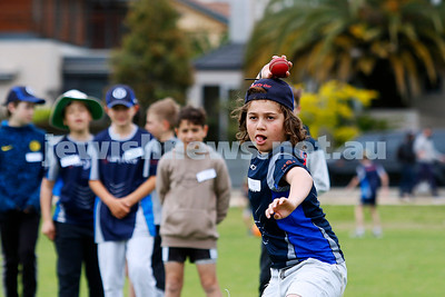Maccabi Jnr Cricket training Nov 2020