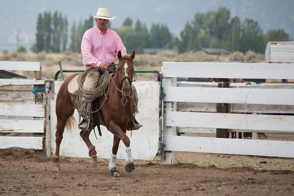 Alturas 2012 Stock Horse