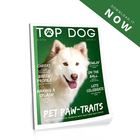 Top Dog Magazine