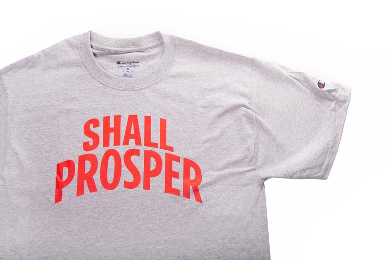 Shall Prosper Grey T Shirt 3.jpg