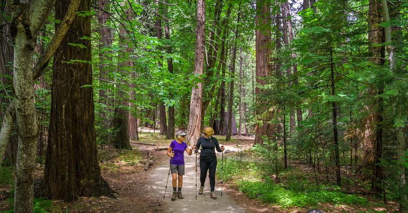 Yosemite -110616-099.jpg
